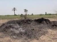 الإرهاب الحوثي على القطاع الزراعي.. إحراق للرقعة الخضراء وتأزيم لحياة السكان