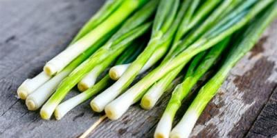 البصل الأخضر.. حماية لجسمك من الأمراض
