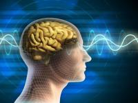 """اختراع مخ اصطناعي يسلط الضوء على مرضى """"الزهايمر والفصام"""""""