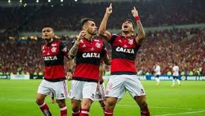 فلامينجو يتوج بلقب الدوري البرازيلي