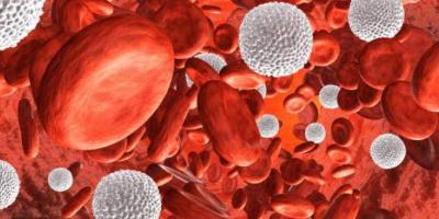 علماء كنديون يكشفون القدرة السحرية لخلايا الدم البيضاء في مكافحة السرطان