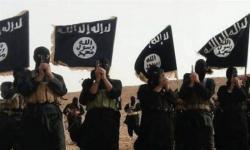 أمريكا تُصنف أذرع داعش في الكونغو وموزمبيق منظمات إرهابية