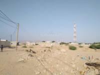 دلتا أبين تفقد 30 ألف فدان من أراضيها الزراعية