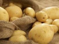 رغم فوائد البطاطس.. دراسات طبية تحذر