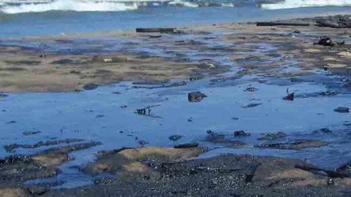 كارثة شبوة النفطية.. نذيرٌ نيران قد يشعلها إهمال الإخوان