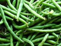 فوائد الفاصولياء الخضراء على صحة الإنسان