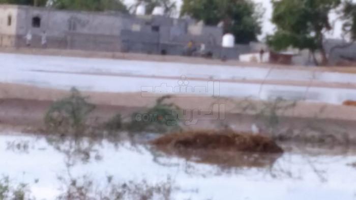 الحواجز الترابية بالدرجاج تنقذها من السيول