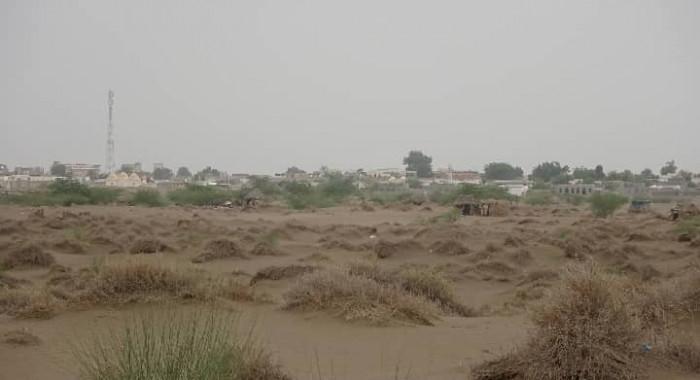 المدفعية الحوثية تهاجم مناطق سكينة في التحيتا