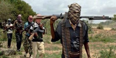 مقتل 15 عسكريًا في هجوم مسلح بالنيجر