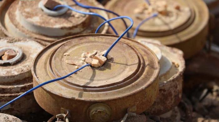 مشروع مسام في اليمن.. فرق ميدانية تنزع بذور إرهاب المليشيات الحوثية