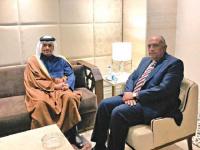 وزير الخارجية المصري والقطري يبحثان تطورات الوضع الفلسطيني