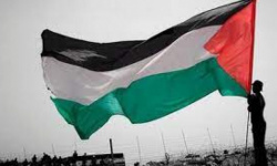 احتفالات بغزة بعد بدء الهدنة بين إسرائيل وفلسطين