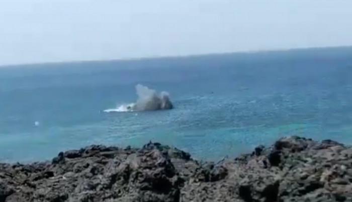 """""""المشتركة"""" تدمر لغمًا بحريًا في البحر الأحمر"""