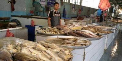 صفقة حوثية لابتزاز بائعي الأسماك في صنعاء
