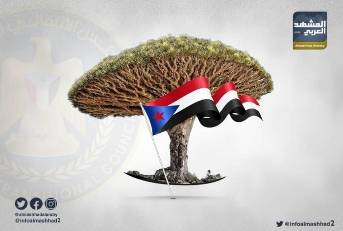 """احتفاء شعبي بـ""""يوم انتصار سقطرى"""" على الإخوان"""