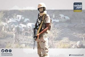 تطوير القوات الجنوبية.. خطوة مهمة على طريق استعادة الدولة