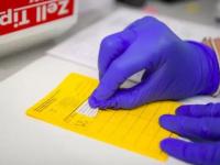 سوق سوداء بروسيا لشهادات تطعيم كورونا المزورة