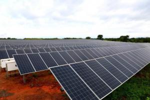 المنصوري: مجمع محمد بن زايد يدعم أفريقيا بالطاقة المتجددة