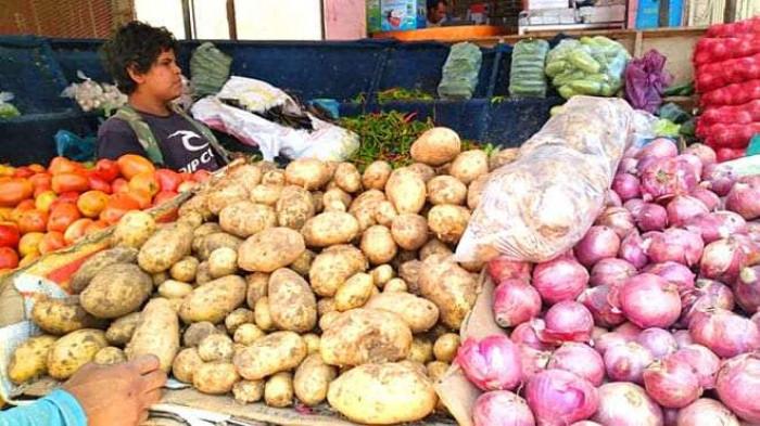 انخفاض البصل والبطاطس.. أسعار الخضروات والفواكه بعدن اليوم الخميس