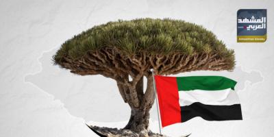 سقطرى.. عام من التحرير والتنمية (ملف)