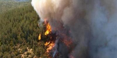 اليونان: اندلاع أكثر من 50 حريق غابات اليوم