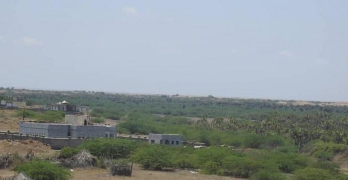 مُسيرة حوثية تصيب مواطنا في قصف على الدريهمي