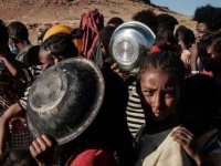 الأمم المتحدة تحذر من كارثة إنسانية تهدد تيغراي
