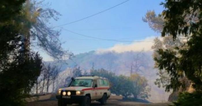 لبنان: حرائق الغابات تندلع من جديد