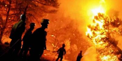 مصرع 4 أشخاص في حرائق الغابات بالجزائر