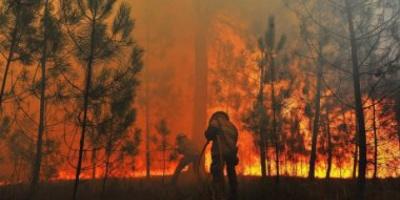 إخماد حريق ضخم اندلع بواحة مغربية