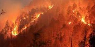 البرازيل: منطاد يتسبب في حريق ضخم بمحمية طبيعية