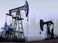 ارتفاع أسعار النفط بنسبة 1.1%