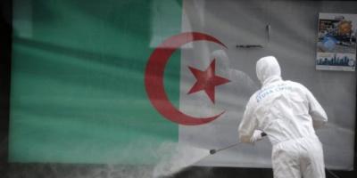 الجزائر: ارتفاع حصيلة إصابات كورونا إلى 204695