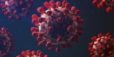 حالتا وفاة و27 إصابة جديدة بفيروس كورونا