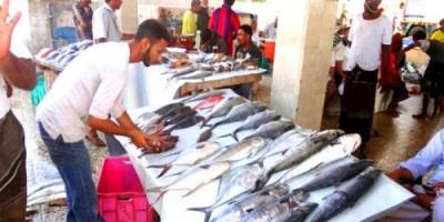 تسعيرة إجبارية يومية لبيع الأسماك