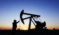 ارتفاع أسعار النفط لأعلى مستوياتها اليوم الإثنين