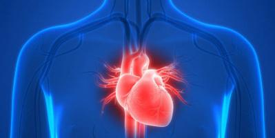 كل ما تريد معرفته عن متلازمة القلب المكسور المميتة
